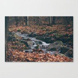 Fall Rivulet Canvas Print