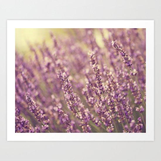 Sea of Purple Art Print