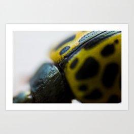 Little Bug Art Print
