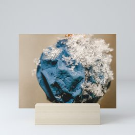 Frosted Wild Berry Planet. Macro Photograph Mini Art Print