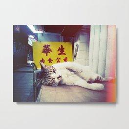 Lazy Cat in Flea market Metal Print