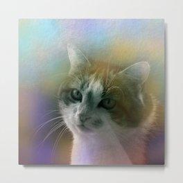 molly - the cat Metal Print