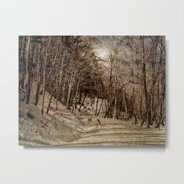 Mountain Path Metal Print