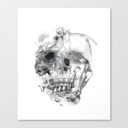 Meanin of life Canvas Print