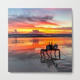 Sunrise crab at Peregian Beach Metal Print