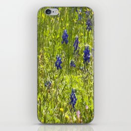 Texas Bluebonnets iPhone Skin