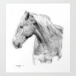 Daniel Adams One Horse Art Print