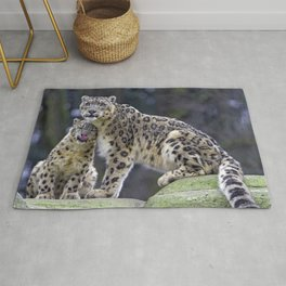 Two Stunning Elegant Snow Leopards Cuddling Close Up Ultra HD Rug