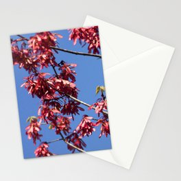 Watercolor Seed, Maple 01, Merchants Millpond, North Carolina Stationery Cards