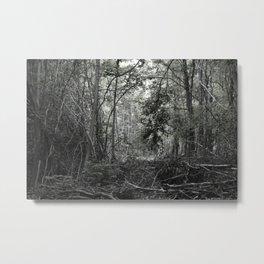 bdlc 001 Metal Print