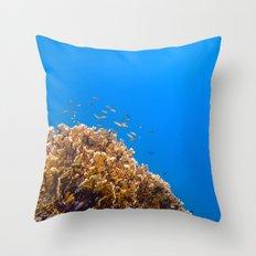 School Throw Pillow