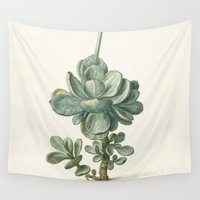 succulent Wall Tapestries featuring Succulent by anipani