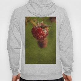 wild berries #11 Hoody