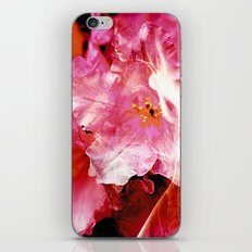 Flower Nymphs iPhone & iPod Skin