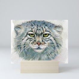 Pallas's cat 862 Mini Art Print