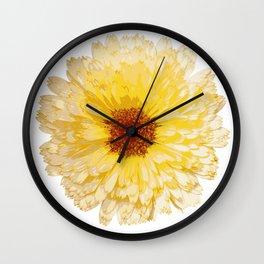 Beautiful Yellow Marigold Vector Isolated Wall Clock
