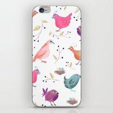 Bird Nests iPhone & iPod Skin