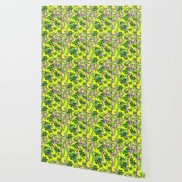daisy yellow Wallpaper