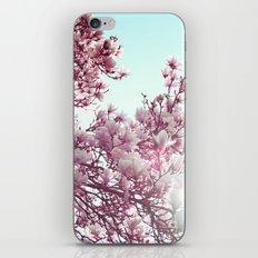 Spring 2 iPhone & iPod Skin