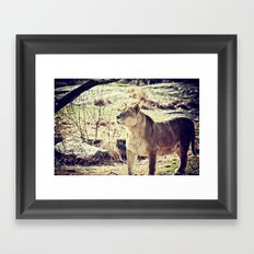Something Caught His Eye Framed Art Print