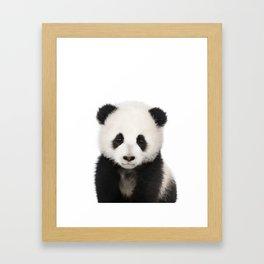 Panda Cub Framed Art Print