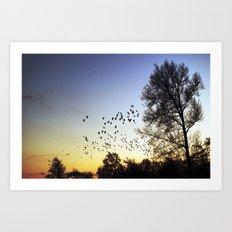 fly. Art Print