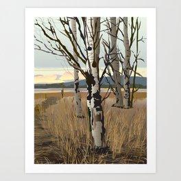 Conboy Wildlife Refuge Art Print