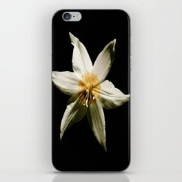 Honey and the Moon iPhone Skin