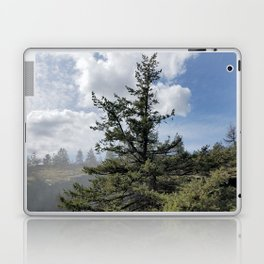 Gnarled Tree Against Blue Sky and Clouds, Beautiful Landscape of Old Tree Laptop & iPad Skin