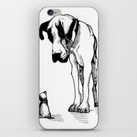 great dane iPhone & iPod Skins featuring Great Dane by Mr Shins