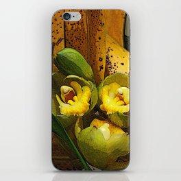 Banana Rama Ding Dong iPhone Skin