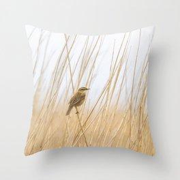 Sedge Warbler. Throw Pillow