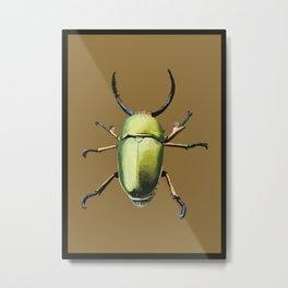 Lamprima Adolphinae / Green Beetle / Escarabajo verde Metal Print