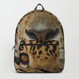 The Jaguar Backpack