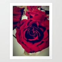 Bittersweet Love for the Crimson Rose Art Print