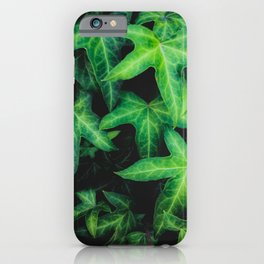 green ivy leaves garden background iPhone Case
