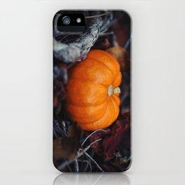 Mini Pumpkin iPhone Case
