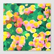 Daisy Patch Canvas Print