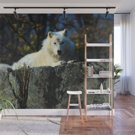 Sentinel: Arctic Wolf Wall Mural