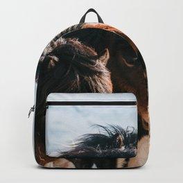 Horses in Iceland - Wildlife animals Backpack