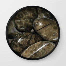 Fossilized Coral Wall Clock