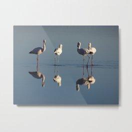 Flamingos, San Pedro de Atacama, Chile Metal Print