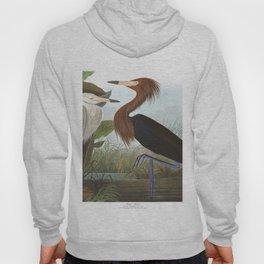 Purple heron, Birds of America, Audubon Plate 256 Hoody