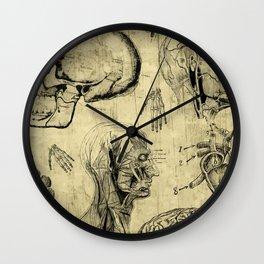 Vintage Human Anatomy Skulls Wall Clock