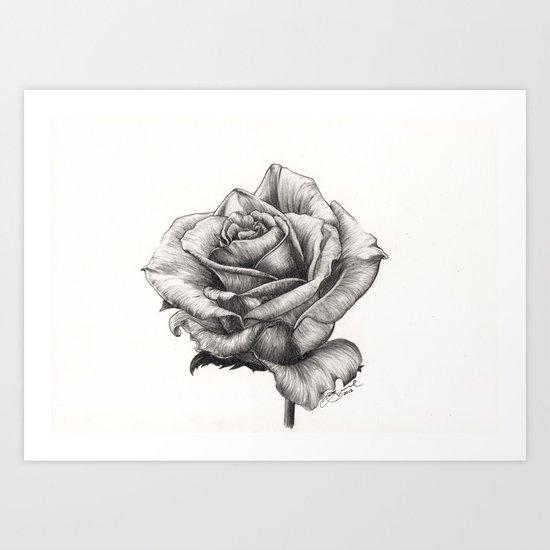 Marilyn Monroe tea Rose Art Print