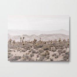 Sierra Nevada Mojave // Desert Landscape Blush Cactus Mountain Range Las Vegas Photography Metal Print