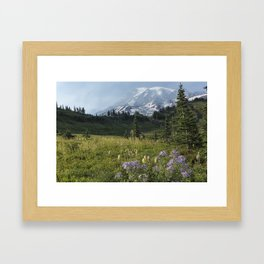 Wildflowers and Mount Rainier Framed Art Print