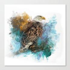 Expressions Bald Eagle Canvas Print