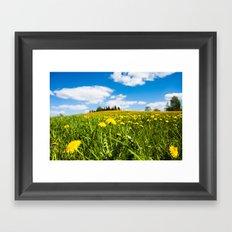 Dandelion field Framed Art Print
