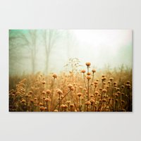 ohio Canvas Prints featuring Daybreak in the Meadow by Olivia Joy StClaire